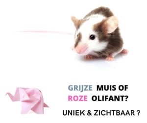 grijze muis of roze olifant