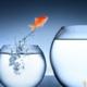 Leid met Lef - betekenisvol persoonlijk leiderschap voor persoonlijke groei voor leiders met lef - Sylvia Bruning Son en Breugel