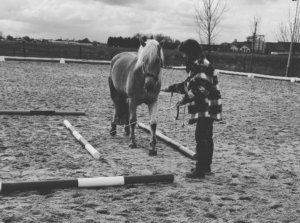 mijn paard loopt mij omver, connectie, grondwerk, oog voor het paard