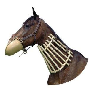 paard bijt dekens stuk, oog voor het paard