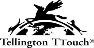TTouch voor paarden, Tellington TTouch, oog voor het paard, anita janssen, connectiesessie