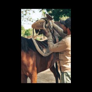 western zadel, oogvoorhetpaard, aansingelen