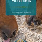 zand eten paard