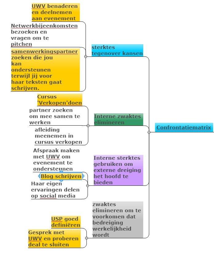 Visualincrease SWOT analyse Strategie en Plan Confrontatiematrix