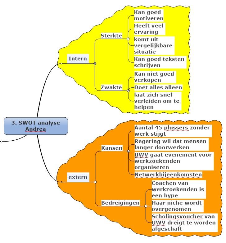Visualincrease SWOT analyse voorbeeld