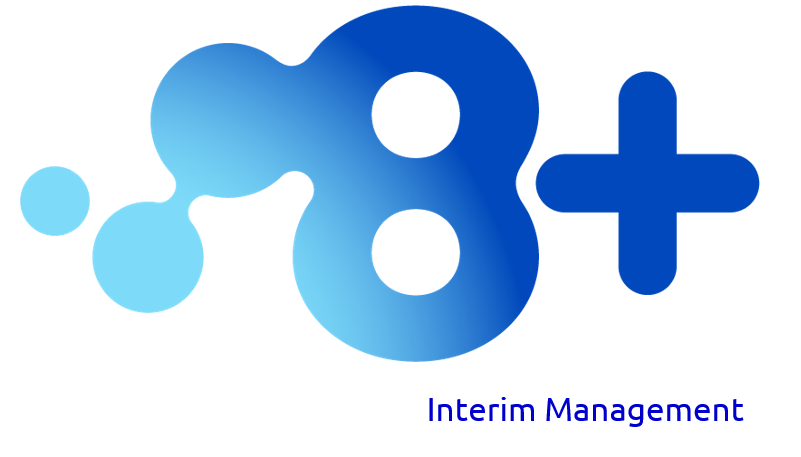 8+ Interim Management