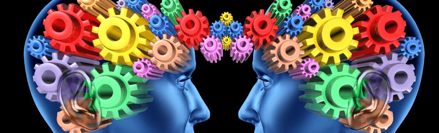 hoe onze hersenen samen werken
